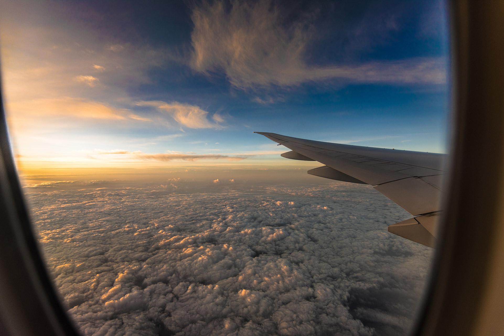 Wings on Board